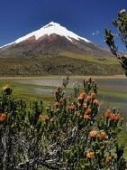 Ecuador - Die Höhepunkte