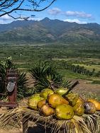 Kuba - Real XL - Eine Rundreise mit intensiven Naturerlebnissen