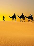 Marokko - Kasbahs, Oasengärten & Königsstädte