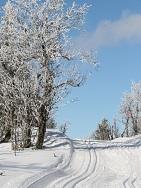 Norwegen - Skilanglauf - Örterstölen