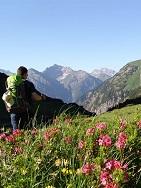Deutschland/Italien/Österreich Alpenüberquerung - klassische Variante