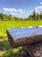 Deutschland - Thüringer Wald   Wandern am Rennsteig