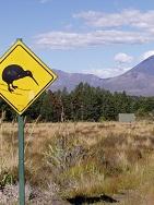 Neuseeland - Naturwunder der Nord- und Südinsel